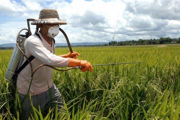 Интенсификация сельского хозяйства - добро или зло?
