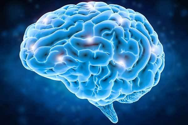 Удивительные свойства головного мозга