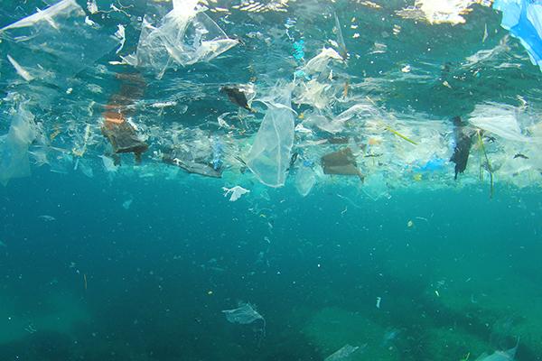 Пластиковый мусор плывет в арктические воды