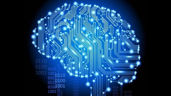 Испанские исследователи: новые нервные клетки способны появляться в течение всей жизни человека