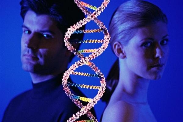 Генетики утверждают, что все люди - родственники