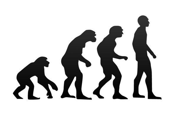 Какие были теории эволюции до Дарвина