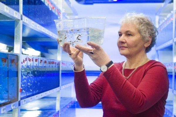 Топ-3 женщин-ученых, получивших Нобелевскую премию. 3538.jpeg