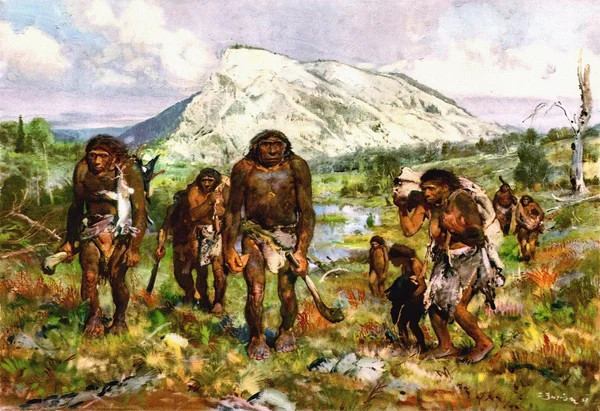 Стала известна еще одна причина массового вымирания неандертальцев