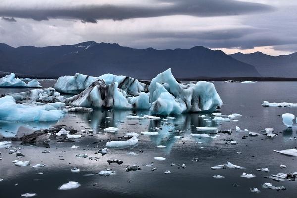 Исчезающий морской лед может разрушить пищевую сеть Арктики