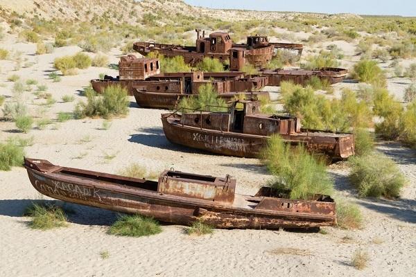 Узбекистан возрождает Арал: пустыню превратят в сад