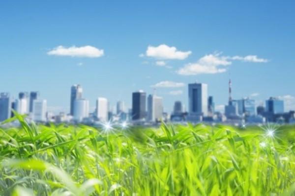 Экология будущего: есть ли пути решения  настоящих экологических проблем человека