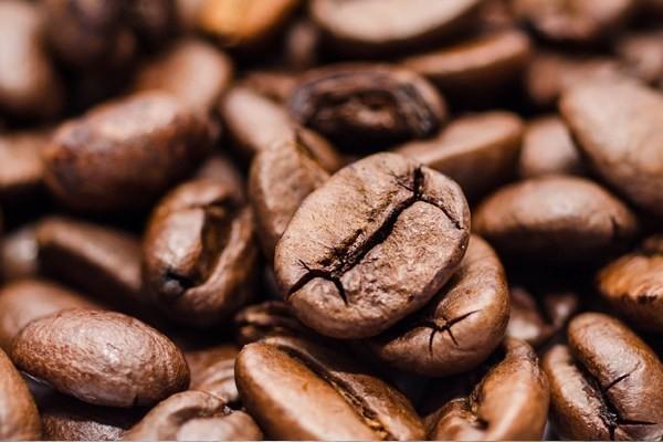 Кофе под угрозой: изменение климата способно кардинально изменить качество зерен