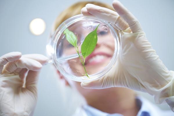 Передовые разработки науки и технологий на помощь природе