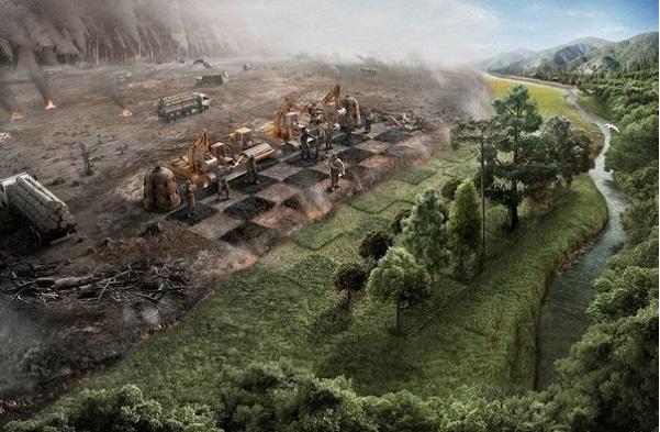 Как человеческая культура потребления разрушает биоразнообразие