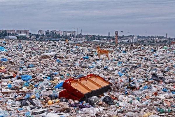Госдума разрешит складирование мусора на малонаселенных территориях