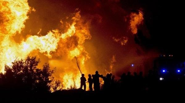 Почему лесные пожары в Чили стали сильнее