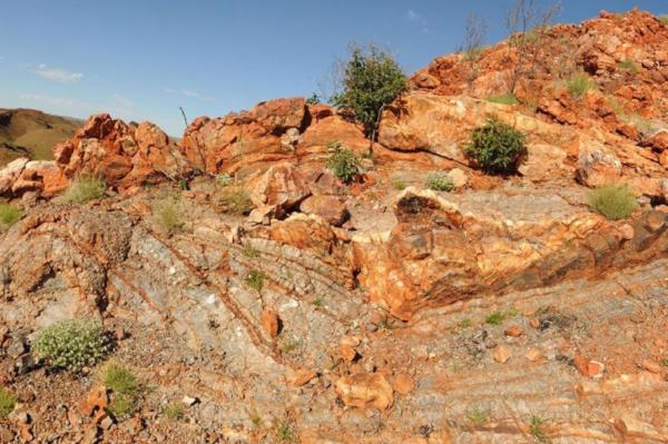 Специалисты раскрыли загадку самых древних существ на Земле