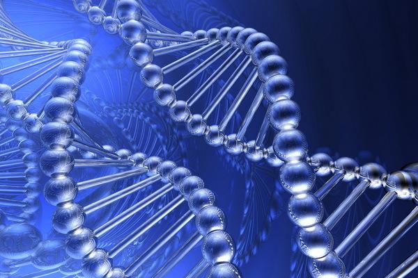 Как генетические вариации могут быть использованы в сравнении людей