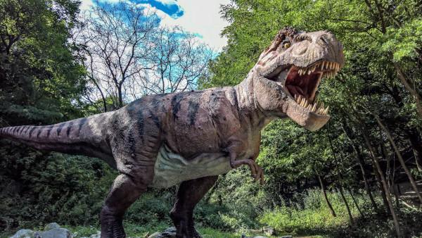 Специалисты выяснили мощность укуса тираннозавра
