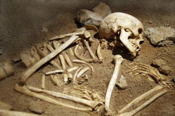 Прорыв: обнаружена ДНК в древних костях, похороненных в воде