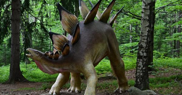 В Марокко обнаружили останки самого древнего стегозавра
