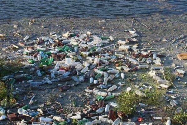 Жители Владивостока собрали 4 тонны мусорных отходов на морских субботниках