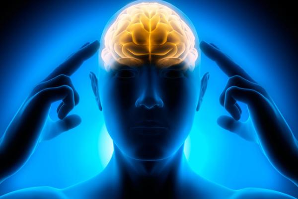 Как альфа-волны способствуют творческому мышлению