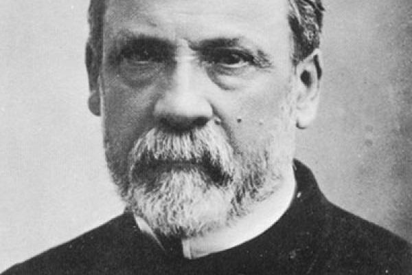 Луи Пастер: основные научные достижения и другие факты из биографии