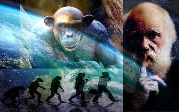 Уфологи рассказали о невероятной теории происхождении человека
