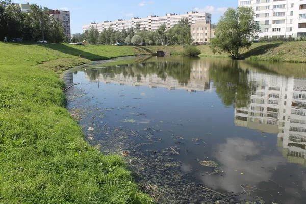 Эксперты заявили об улучшении качества воды в реке Новой