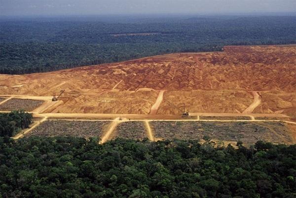 Влияние производства продуктов питания на экологию