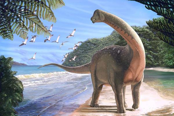Найденное захоронение эмбрионов динозавров станет важным звеном в изучении их эволюции и жизни