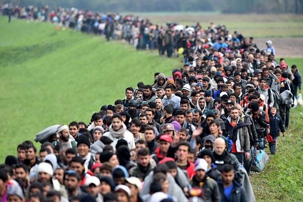 Влияет ли миграция на перенаселение?