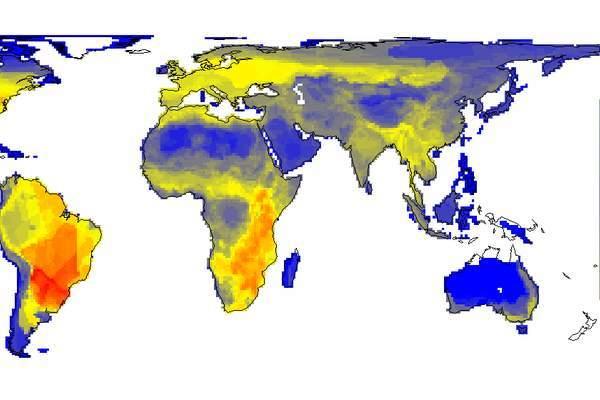 Распределение видов на Земле становится все более однородным