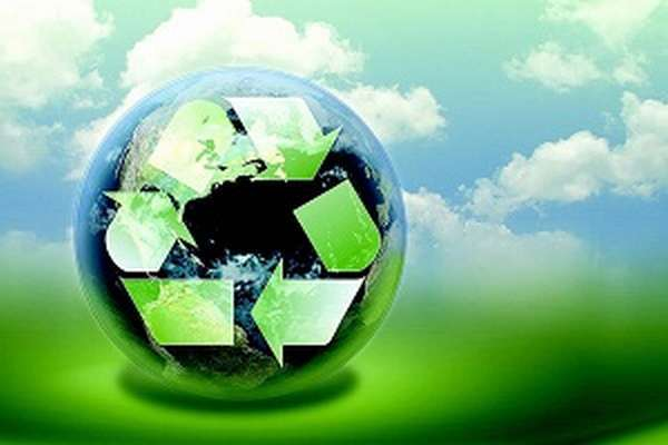 Как изменились экологические циклы из-за влияния человека во второй половине XX века