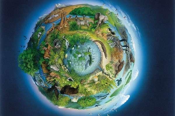Наиболее значительные структурные изменения экосистем