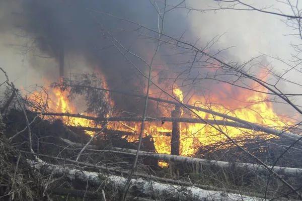 Приамурье будет бороться с пожарами при помощи спецтехники