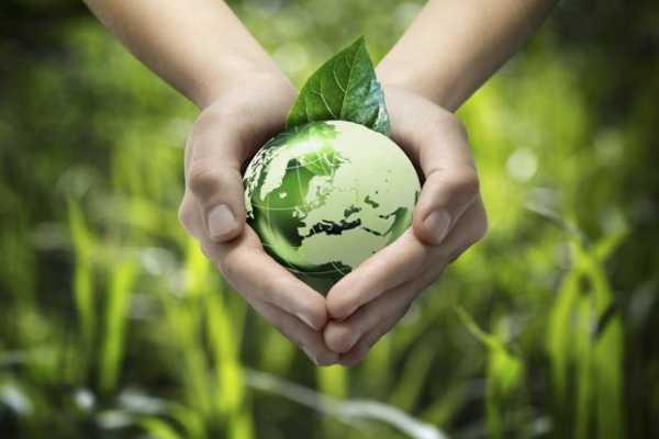 Поможет ли экологический туризм сохранить природу