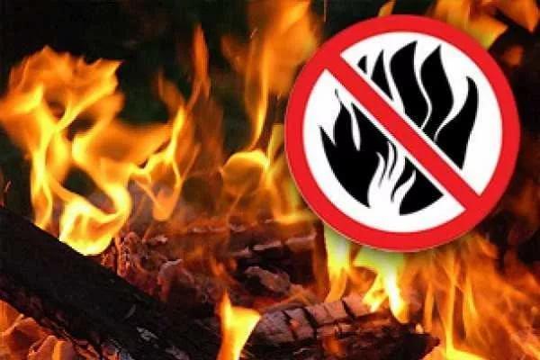 Особый противопожарный режим был отменен в Воронеже
