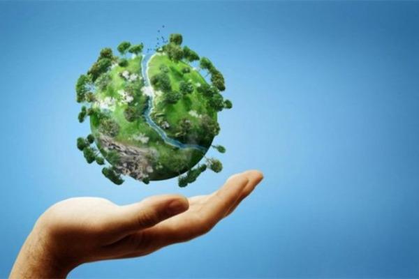 Удивительные факты об окружающей среде и экологии