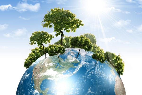 Что нужно сделать, чтобы предотвратить глобальное потепление?