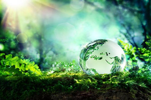 Как мы ежедневно вредим окружающей среде