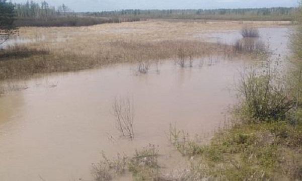 Амурчане напуганы возможной экологической катастрофой в Зейском районе