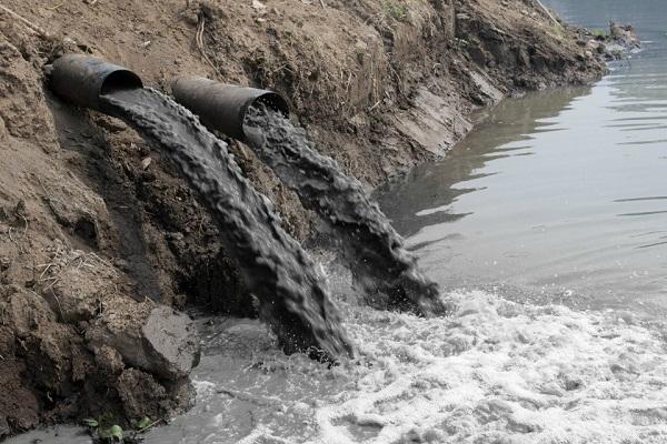 В Тюменской области возбуждено свыше 230 дел об экологических преступлениях