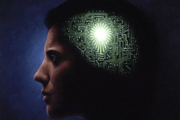 Мозг хранит временные записи перед созданием пожизненных воспоминаний