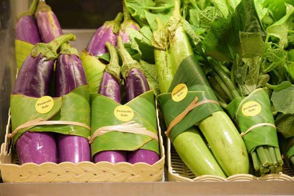 Экологичные идеи: упаковки из банановых листьев, стаканчики из кабачков
