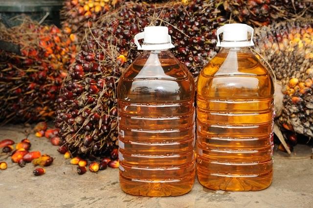 Расширяющееся производство пальмового масла угрожает здоровью людей и экологии
