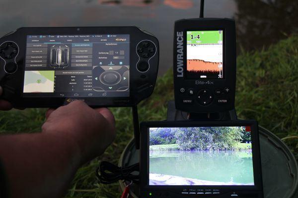 Новый способ отслеживания животных без GPS