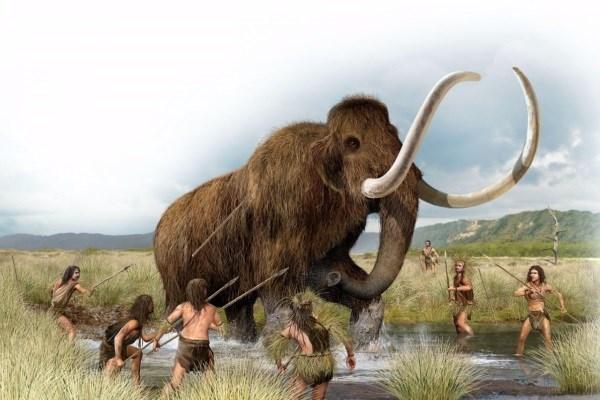Еще одна версия вымирания неандертальцев выдвинута учеными из Франции