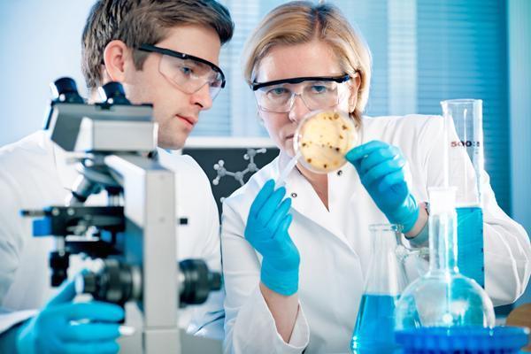 Важные научные открытия, которыми человечество может гордиться
