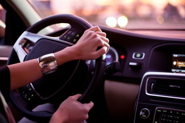 Проверено на крысах: вождение способствует снижению уровня стресса