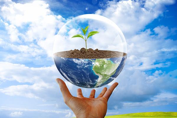 Жителям РФ предложили решать экологические проблемы творчески