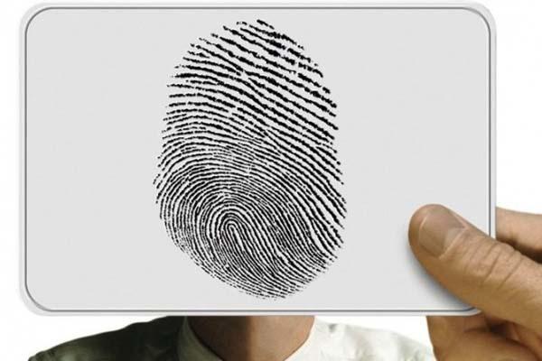 Отпечатки пальцев меняются в течение жизни