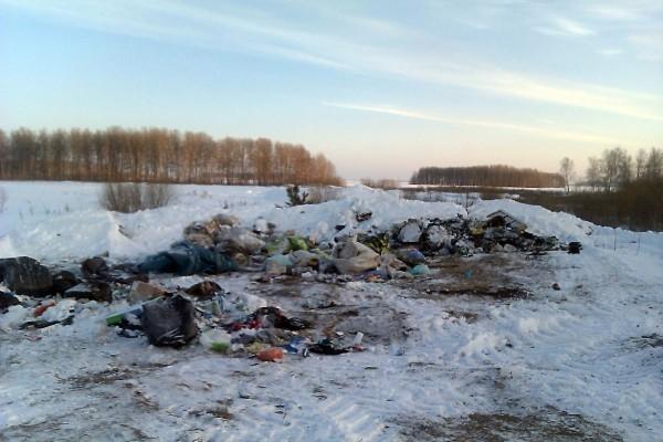 Цуканов: вТюменской области множество проблем всфере экологии